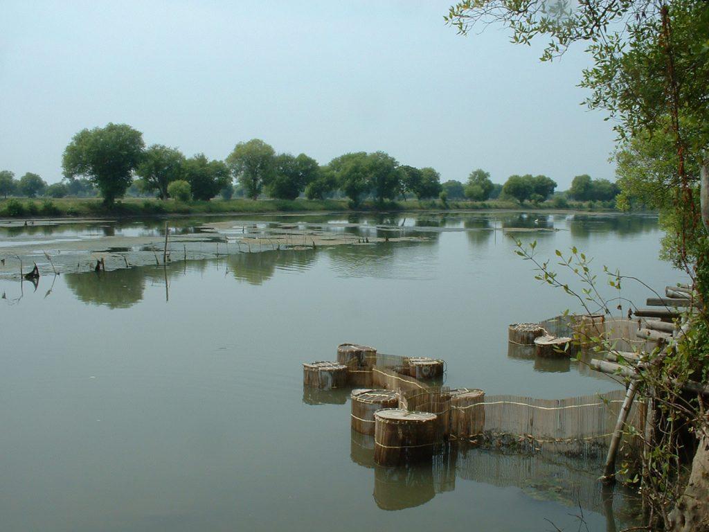 エビ養殖池の整地、土手修復などの整備
